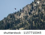 helicopter flying toward the...   Shutterstock . vector #1157710345