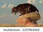 a saber toothed cat stands atop ... | Shutterstock . vector #1157863465
