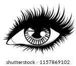 fashion female eye with long... | Shutterstock .eps vector #1157869102