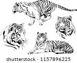 set of vector drawings on the... | Shutterstock .eps vector #1157896225