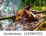 roast chicken grilled with herb ... | Shutterstock . vector #1157897272