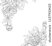 peonies graphic line sketch.... | Shutterstock .eps vector #1157933425