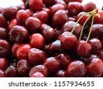 beautiful ripe fruit cherry... | Shutterstock . vector #1157934655