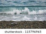 Alone Stone On Beach Against...