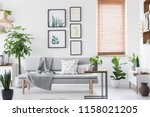 gallery with plant posters... | Shutterstock . vector #1158021205