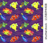 flowerhorn cichlid fish ... | Shutterstock . vector #1158094408