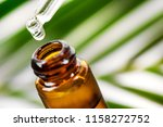 herbal essence. alternative... | Shutterstock . vector #1158272752