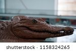 stuffed crocodile in the store | Shutterstock . vector #1158324265