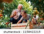 family working together in... | Shutterstock . vector #1158422215