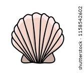 scallop sea shell. hand drawn...   Shutterstock .eps vector #1158542602