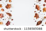 autumn composition. frame made... | Shutterstock . vector #1158585088
