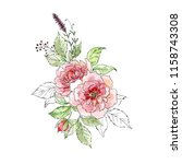 watercolor and ink illustration.... | Shutterstock . vector #1158743308