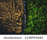 half autumn half summer forest... | Shutterstock . vector #1158945682
