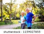 happy senior couple jogging... | Shutterstock . vector #1159027855