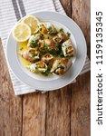 french cuisine  sea snails... | Shutterstock . vector #1159135345