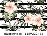 tropical peach hibiscus and... | Shutterstock .eps vector #1159222468