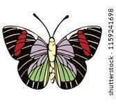 butterfly cartoon drawing ...   Shutterstock .eps vector #1159241698