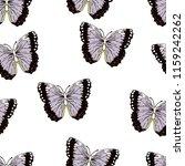 butterfly cartoon drawing... | Shutterstock .eps vector #1159242262