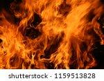 Fire. Wood Fire. Bonfire On A...
