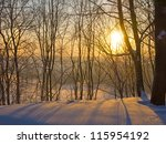 A Rising Sun In The Winter Par...