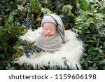 newborn photo shoot in nature.... | Shutterstock . vector #1159606198