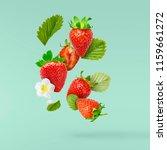 flying fresh tasty ripe... | Shutterstock . vector #1159661272