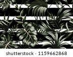Tropical Dark Green Leaves...