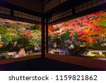 Stock photo light up at night autumn scenery of maple trees by majestic traditional japanese architectures in 1159821862