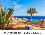 sunny resort beach with palm... | Shutterstock . vector #1159913338