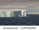 huge tabular iceberg floating...   Shutterstock . vector #1159936405