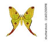comet moth vector stylized...   Shutterstock .eps vector #1160150098