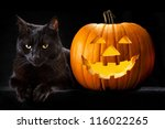 Stock photo halloween pumpkin and black cat scary spooky and creepy horror holiday superstition evil animal and 116022265