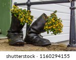 yellow flowers grow in the old... | Shutterstock . vector #1160294155