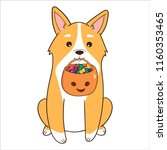 welsh corgi dog with halloween... | Shutterstock .eps vector #1160353465
