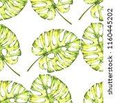 watercolor seamless pattern....   Shutterstock . vector #1160445202