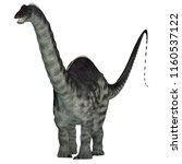 apatosaurus dinosaur on white... | Shutterstock . vector #1160537122