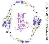 watercolor purple lavender... | Shutterstock . vector #1160543518