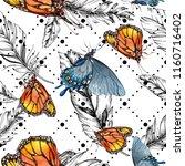 exotic butterflies wild insect... | Shutterstock . vector #1160716402