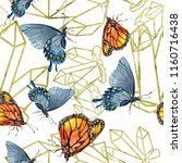 exotic butterflies wild insect... | Shutterstock . vector #1160716438