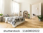 stylish apartment interior with ... | Shutterstock . vector #1160802022