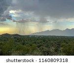 Desert Nature   Monsoon Rain...