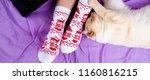 banner for website  soft photo... | Shutterstock . vector #1160816215