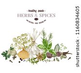 hand drawn border with herbs... | Shutterstock .eps vector #1160834605