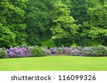 Stock photo colonial parc in brussels belgium with blossoming rhododendrons 116099326