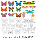 vector  isolated  insect set of ... | Shutterstock .eps vector #1161043255