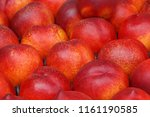 close up of nectarines on market | Shutterstock . vector #1161190585