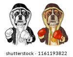 dog boxer dressed in human in... | Shutterstock .eps vector #1161193822