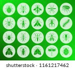 Danger Insect Icons Set. Web...