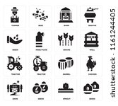 set of 16 icons such as seeds ...