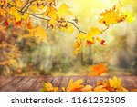 autumn leaves background | Shutterstock . vector #1161252505